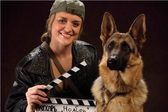 Почему мы любим фильмы про собак?