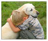 Как живется собакам в других странах? Часть 2
