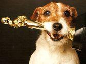 кинопремии для собак-актеров
