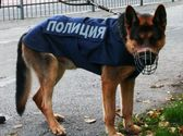 форма полицейских собак