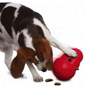 полезные игрушки для собак