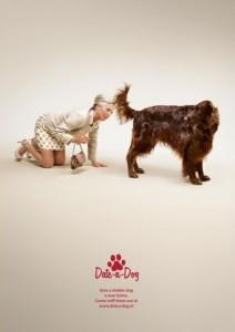 креативная реклама собачьего приюта