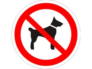С собакой не входить